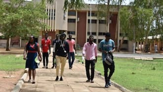 Fed Poly Bauchi sacks two lecturers for alleged female harassment, dismisses 30 students over forgery