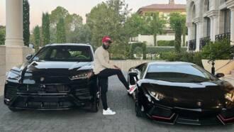 Moneyman Mayweather stuns fans as he shows off exotic N85m Lamborghini and N100m Ferrari cars