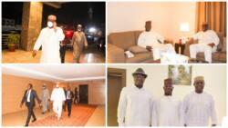 Photos emerge as Fani Kayode joins APC governors, others for Buhari's son's wedding