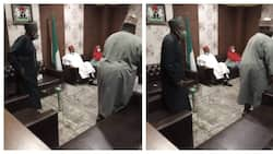 After years of 'hide and seek', Ganduje finally meets his rival, Kwankwas, photos surface