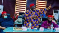 Ohanaeze Ndigbo blames IPOB for crisis in southeast Nigeria