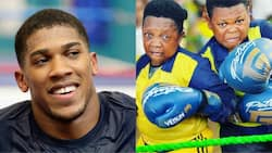 Nollywood veteran actors Osita Iheme and Chinedu Ikedieze call out Anthony Joshua as they show off boxing skills