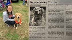 Woman mourns her dog like it is a child, publishes its obituary in national newspaper (photos)