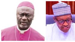 There's more politics among churches than in Buhari's office - Top bishop