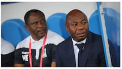 Super Eagles legend who got fired as coach of African side gets the boot with top Egyptian club