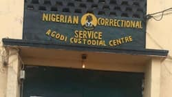No testing, no jail: Nigerian prison rejects suspects without COVID-19 test