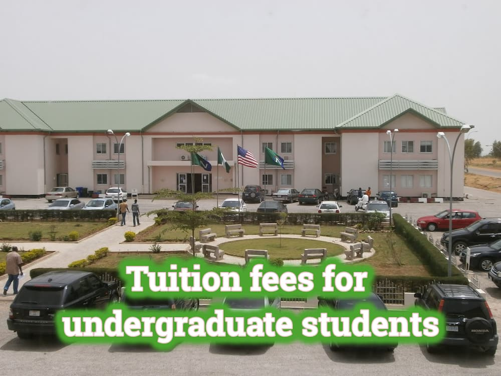 American University of Nigeria fees