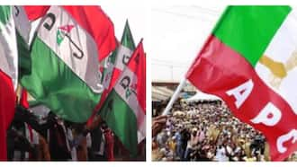 Just in: APC chairman, executive members in northern state defect to PDP