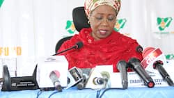 MSME funds: List of criteria to meet to qualify for FG's business survival loans