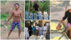 4 brilliant Nigerian youths who are making it big as farmers after graduating from university