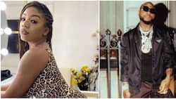 Buckle up and hold your handkerchiefs: Angel brags as fans criticize Davido for chilling with her