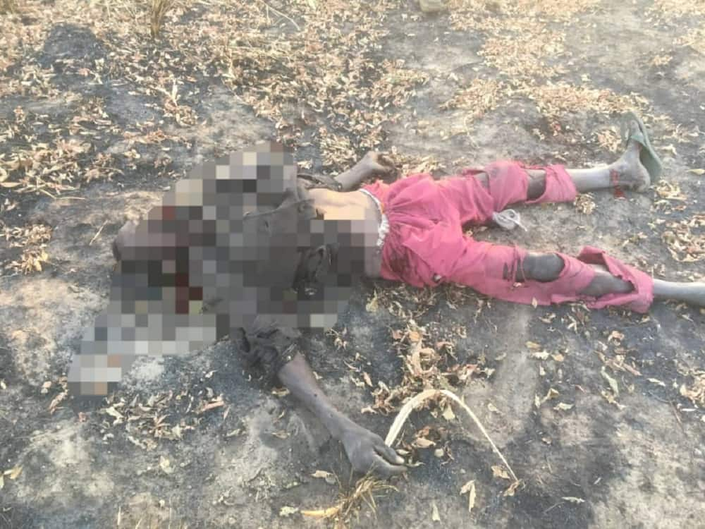 Hotunan 'yan Boko Haram da soji suka kashe, sun damke mai hada bama-bamai a Borno