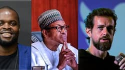 Twitter ban: How inconsistent govt policies are affecting Nigerian tech space, IT expert reveals