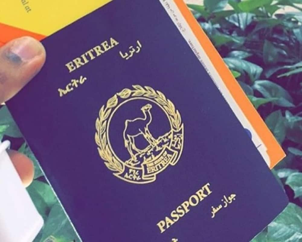 These are the seven most worthless African passports to hold in 2021