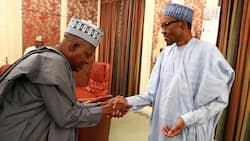 By-election: APC appoints former northern governor to bring victory to party in Cross River