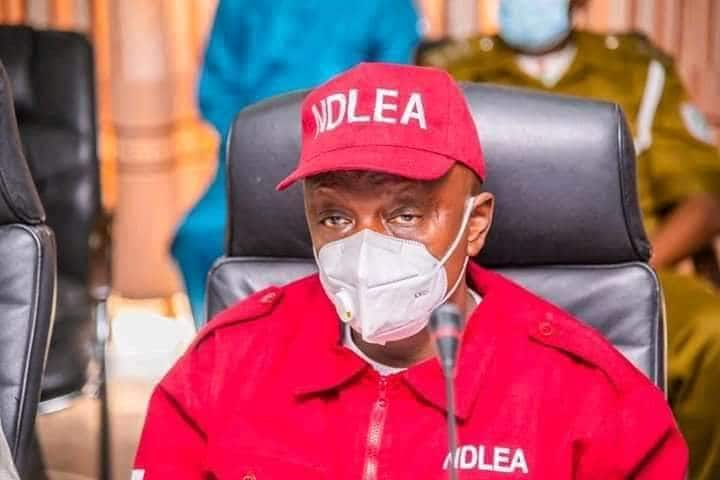 Employment Opportunity: NDLEA Releases List of Candidates for Final Screening