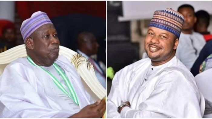 Nigerian governor sacks media aide for criticising President Buhari