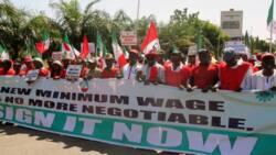 Prepare for mega strike, massive protest, NLC, TUC to Nigerians