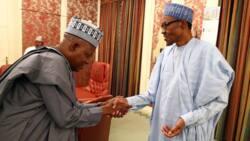 Abinda Kashim Shettima, tsohon gwamnan Borno, ya fada a kan yi wa Buhari ihu a Maiduguri