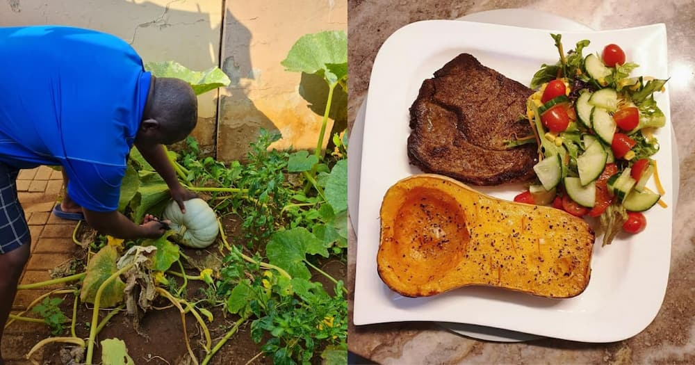Chow what you grow: SA man impresses with food cooked from garden