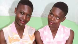 Identical twins who were separated at birth reunite 19 years later