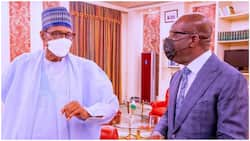 Obaseki opens up on his meeting with Buhari, shares crucial details