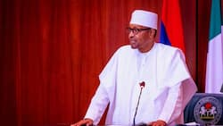 We are preparing APC to remain in power for as long as possible - President Buhari declares