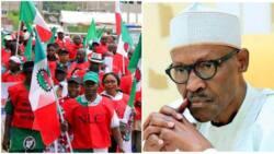 Nigerian Workers Salary News Today | Nigerian Workers Salary
