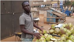 See photo of university student who sells coconut for a living in Ghana, he is 27-year-old