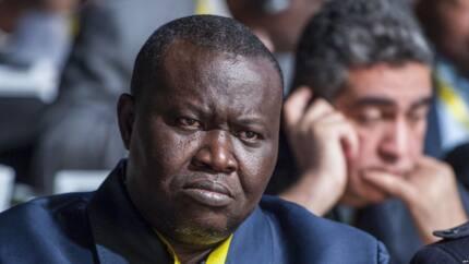 Former Central African Republic militia apprehended in France over alleged war crimes