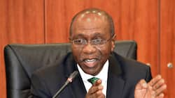 This is when naira will begin recovery against dollar - CBN