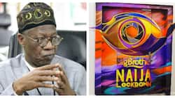 UPDATED: It's a lie, I didn't ask NBC to halt Big Brother Naija - Lai Mohammed