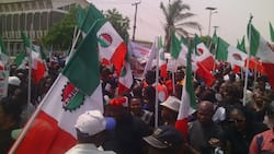 NLC to Imo PDP: Don't drag labour unions into local politics