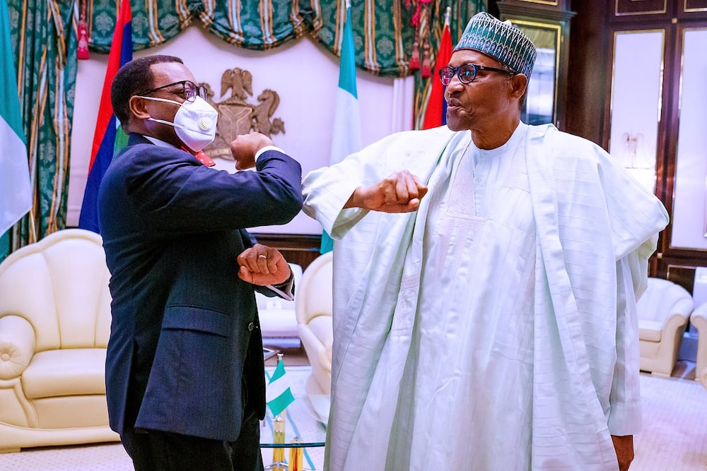 Buhari finally opens up, reveals why he supported Adesina for AfDB job