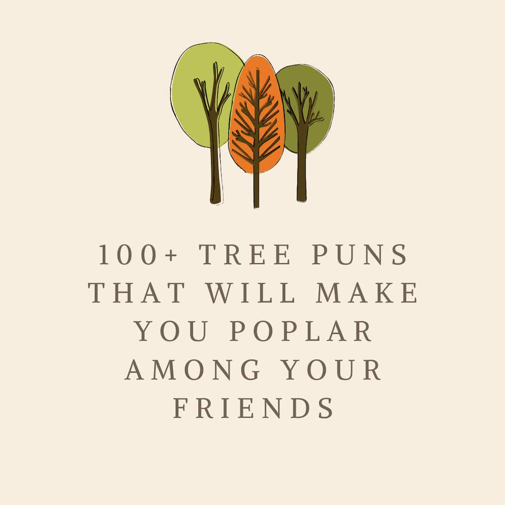 tree puns