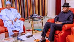 2023: Prominent northern lawmaker reveals why APC is wooing Jonathan, speaks about Tinubu's ambition