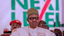 Buhari moves forward with goal of lifting 100m Nigerians out of poverty, unveils new plans