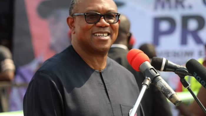 Peter Obi ga Buhari: Ka dinga daukan hoto da 'yan Najeriya masu tasiri, ba 'yan siyasa marasa daraja ba
