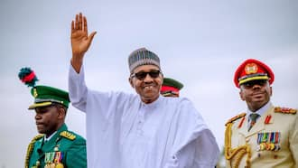 Great news as Buhari makes irresistible offers to ex-Biafran soldiers