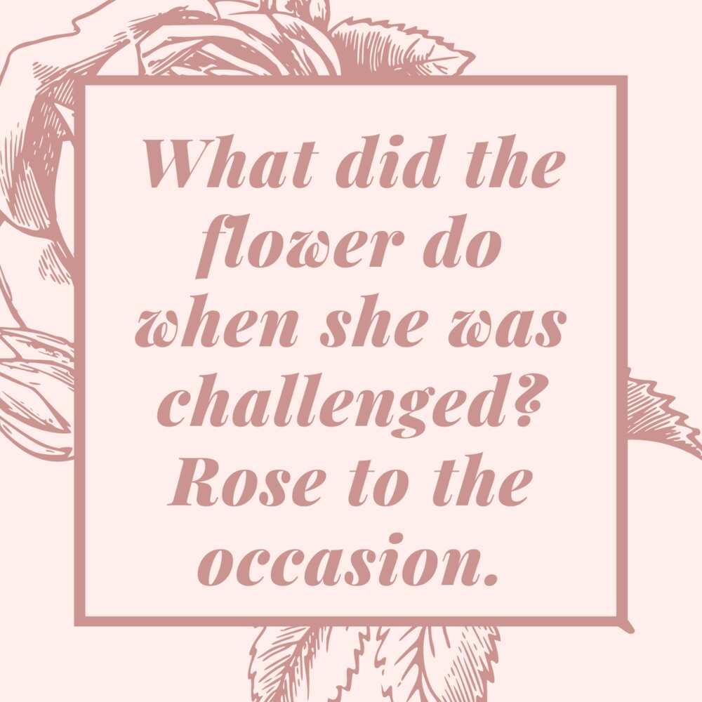 rose puns
