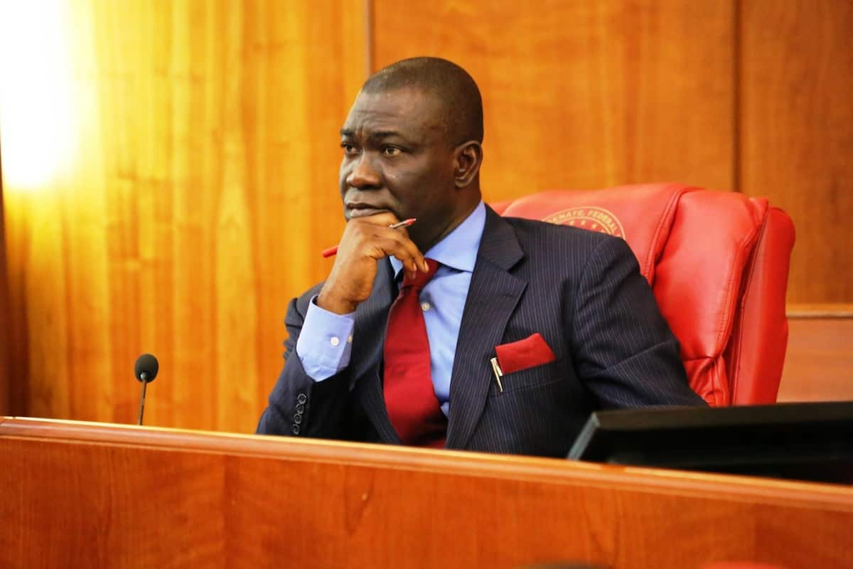 Ekweremadu: Walid Jibrin reacts to IPOB's attack on former deputy Senate president