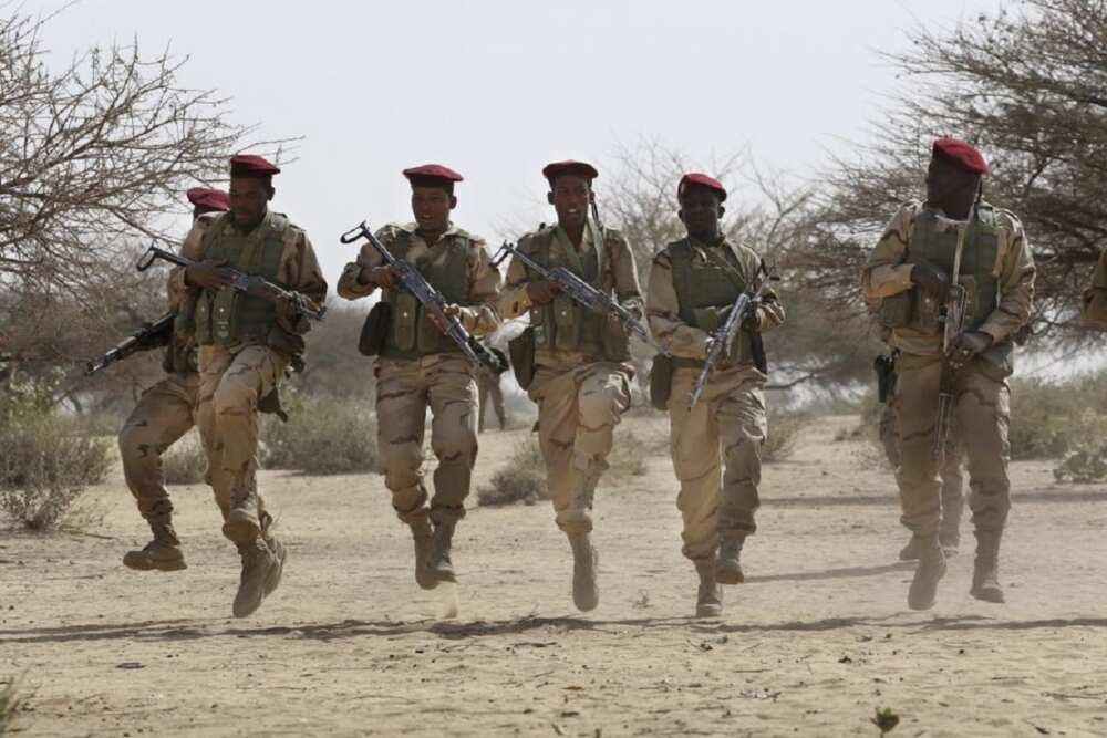 'Ka gayyato sojojin Chadi su taya mu yaki da Boko Haram' - Zulum ya roki Buhari