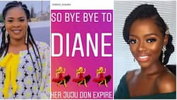I don't know how she kept escaping - Actress Bidemi Kosoko reacts to Diane's eviction from BBNaija