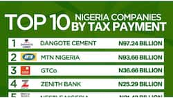 Dangote Cement, MTN Pay Highest Income Tax to FG in 2020