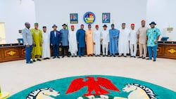 Breaking: Miyetti Allah finally bows to pressure, backs southern governors on open grazing ban