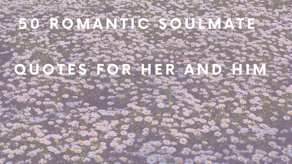 50 romantic soulmate quotes for her and him ▷ Legit ng