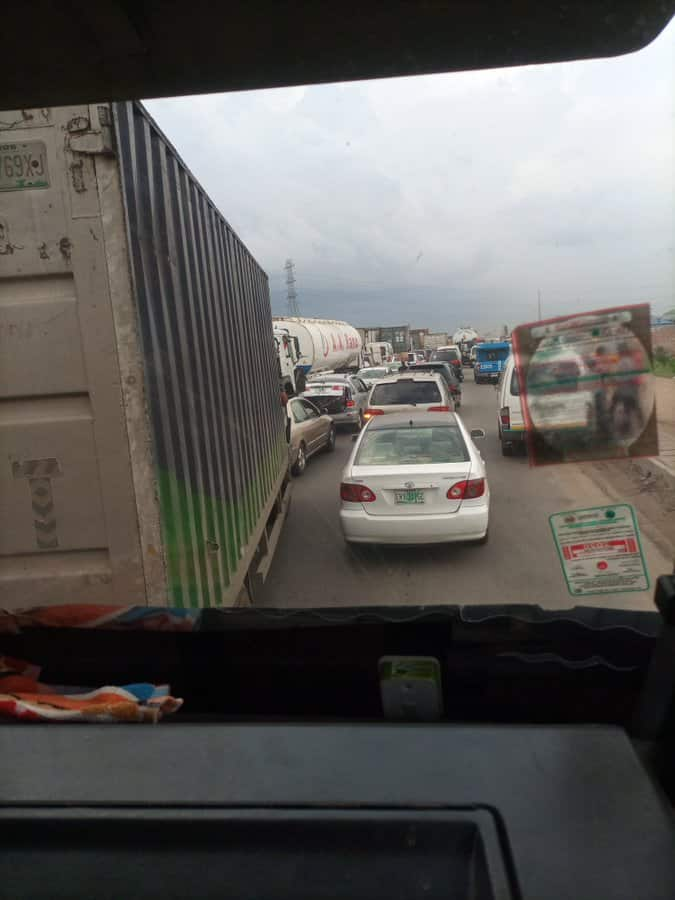 Protest as cows cause accident on Lagos-Ibadan expressway