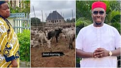 Chiefpriest laments, says village people demanding 46 goats after he gifted Obi Cubana cows for burial