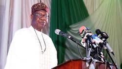 Buhari's achievements impacting positively on millions of Nigerians - Lai Mohammed