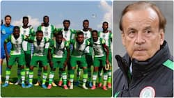 Former Nigerian star 'attacks' Gernot Rohr after Super Eagles disappointing outings against Cameroon